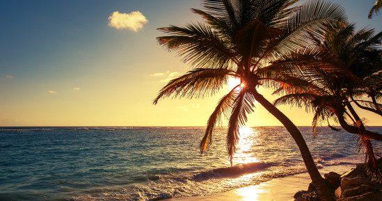 Trauminsel Jamaika